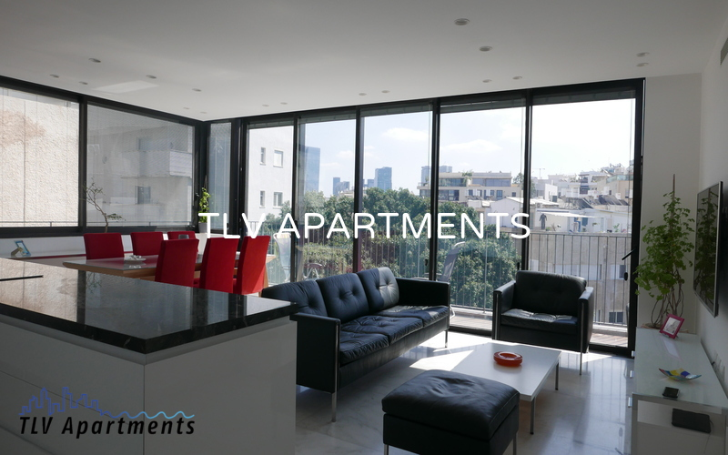 Spacious and very lighted apartment