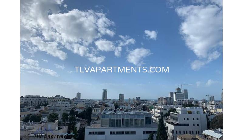 Beautiful furnished duplex penthouse