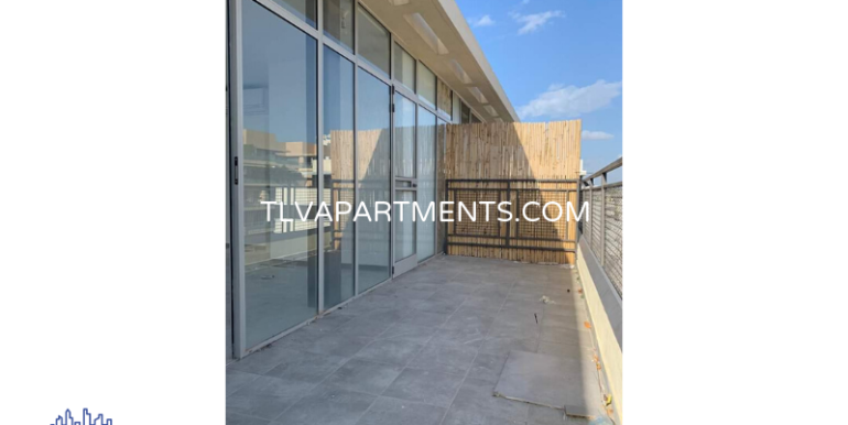 New Rooftop Duplex Apartment