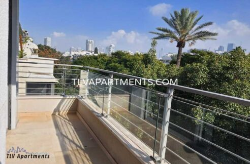Spacious lighted apartment with green view